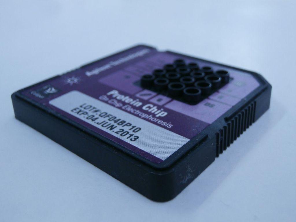 Chip electroforetico
